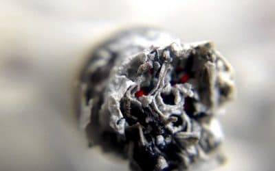 """The WHO Risks Being Labelled an """"Enemy of Tobacco Harm-Reduction"""""""